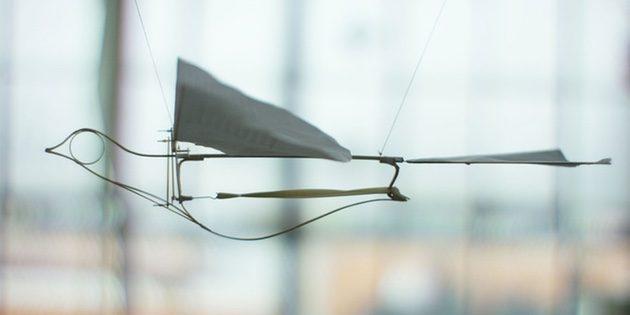 Штука дня: The Flying Martha Ornithopter