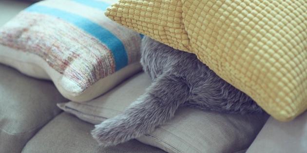 Qoobo — антистресс-подушка