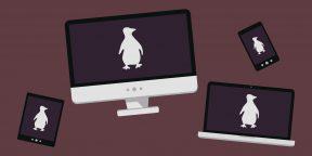 Как установить Linux: подробнейшая инструкция