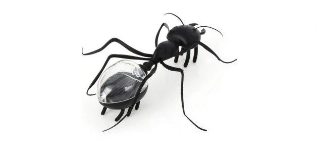 Что подарить ребёнку: игрушечный муравей
