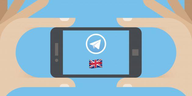 20 каналов и ботов в Telegram, которые помогут в изучении английского языка