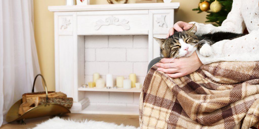 Как сделать дом уютным: 7 простых и работающих советов