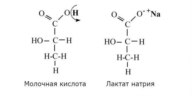 молочная кислота и лактат