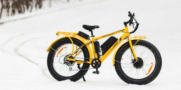 велогибрид BIGCAT DUAL 1000