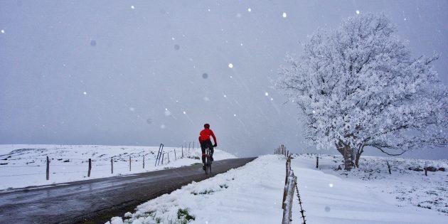 зимние тренировки: маршрут