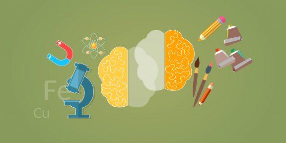 Правши и левши: всё, что стоит знать об асимметрии мозга