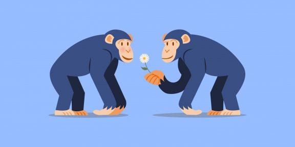 Дарвиновский парадокс: как современная наука объясняет феномен гомосексуальности
