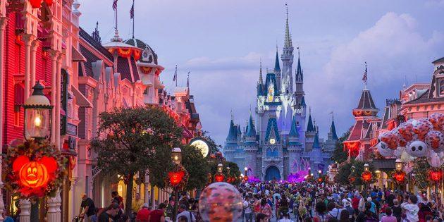 Куда поехать в феврале: Флорида, США