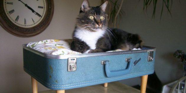 Вторая жизнь вещей: чемодан