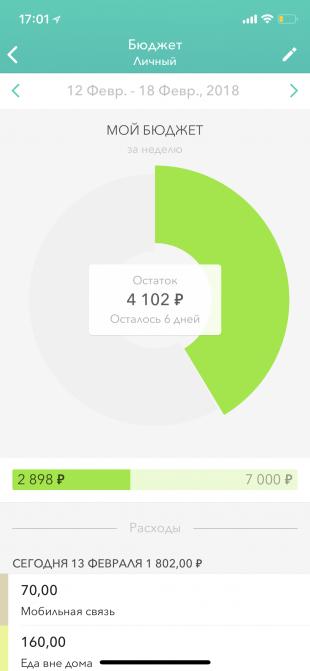 Moneon для iOS: диаграмма