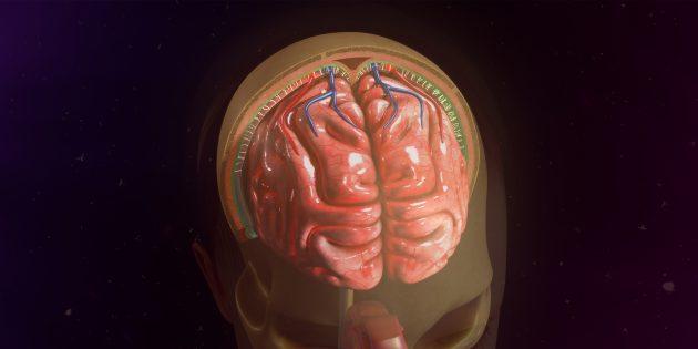 9 мифов о менингите, в которые уже нельзя верить