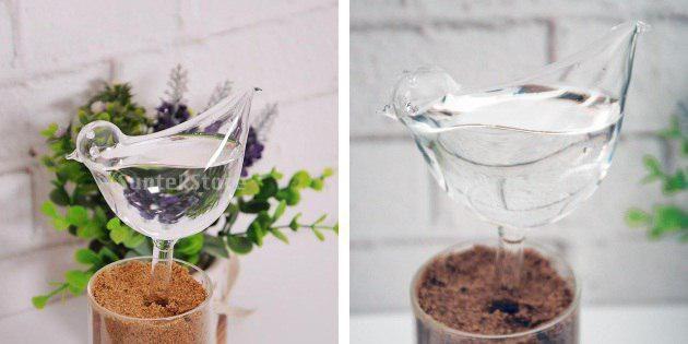 Птица для увлажнения цветов