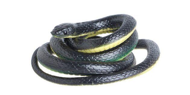 розыгрыши на 1 апреля: Резиновая змея