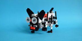 Обзор Xiaomi MITU Smart Building Blocks Robot — программируемого конструктора для детей любого возраста