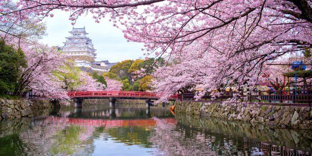 Куда поехать в апреле: 10 лучших направлений для тех, кто жаждет солнца и впечатлений