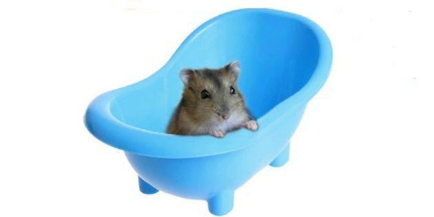Пластиковая ванночка