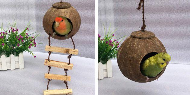 Кокосовое гнездо