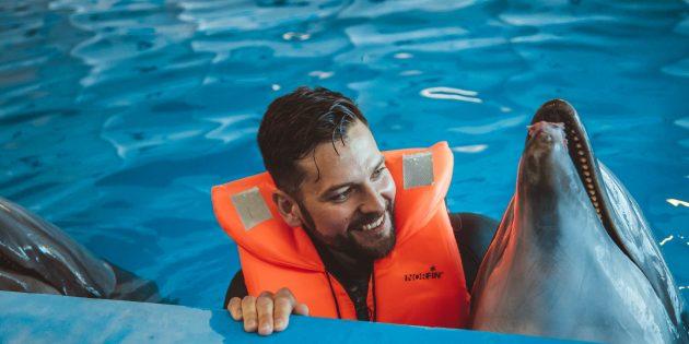 Москвариум: плавание с дельфинами