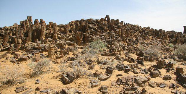 Страны ближнего зарубежья: Каменный лес Джаракудук в Узбекистане