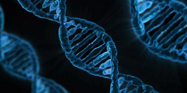 Пройдите генетический тест