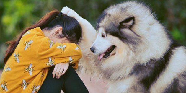 Как найти слова утешения, если близкому человеку плохо