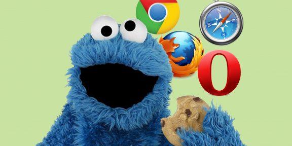Как включить Сookie в браузере и зачем это нужно