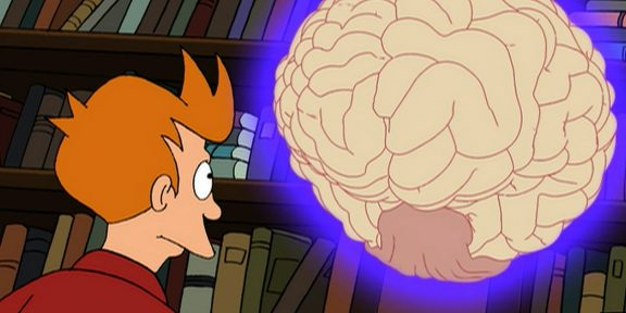 Как исследователи изучают мозг человека в отрыве от тела