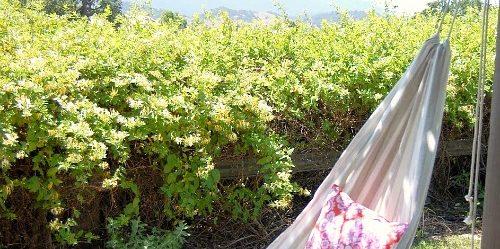 Гамак своими руками: Гамак из прошитой ткани на верёвках