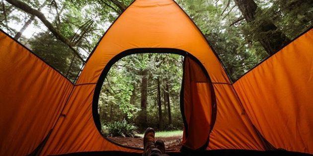 Большая палатка: вид изнутри