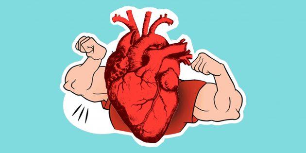 Сколько заниматься спортом, чтобы сердце оставалось молодым