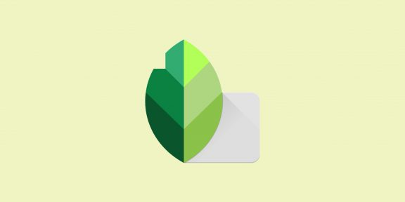 Snapseed: полный гид по одному из мощнейших фоторедакторов для Android и iOS