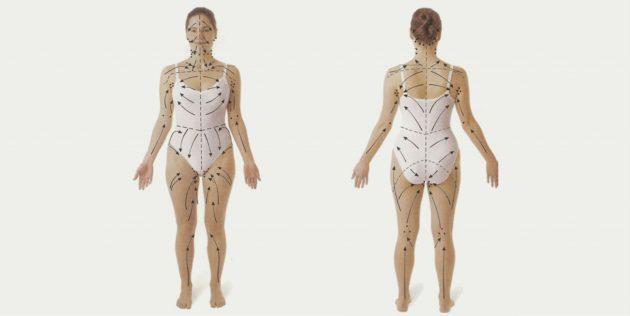 Как делать вакуумный массаж: Массажные линии тела