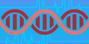 Что происходит с генами после смерти