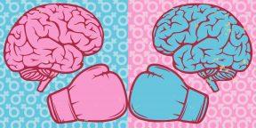 Чем различается мужской и женский мозг и на что это влияет