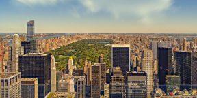 Как преодолеть языковой барьер, если вы переехали в Нью-Йорк