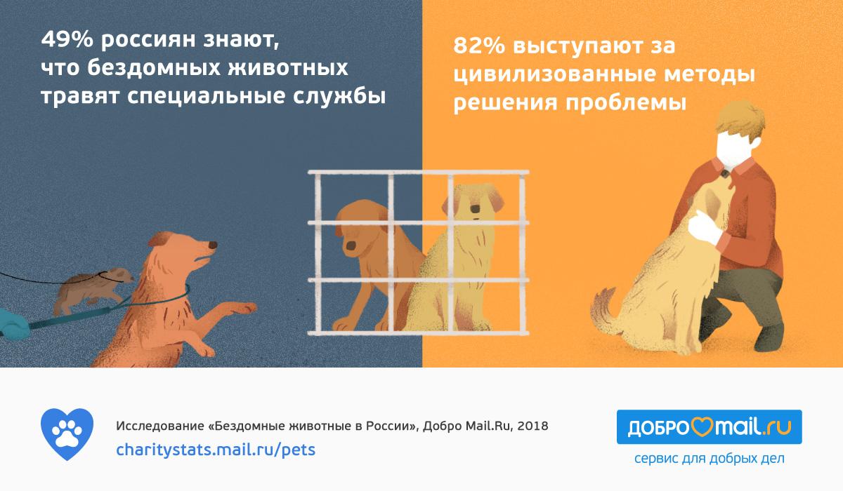 мы любим животных и хотим им помочь