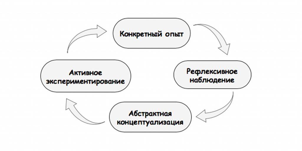 Стили обучения: Цикл