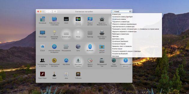 Системные настройки macOS: Как использовать поле поиска