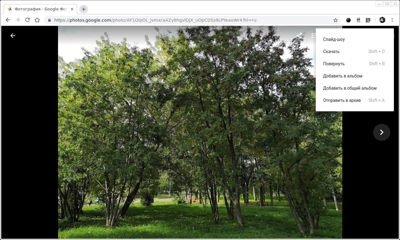 как на гугл фото запустить слайды будете