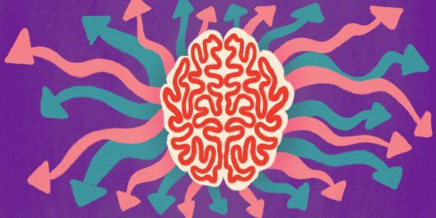 Мозг и свобода воли: как мы принимаем решения на самом деле