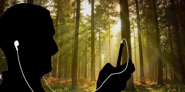 11 сайтов и приложений, где можно слушать звуки природы