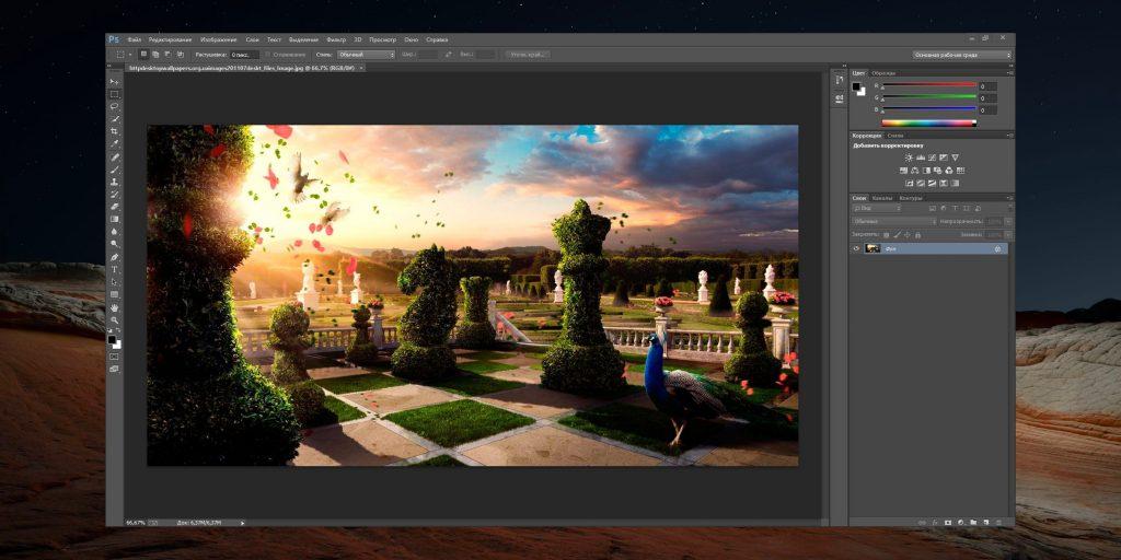 Платные программы для рисования на компьютере: Adobe Photoshop