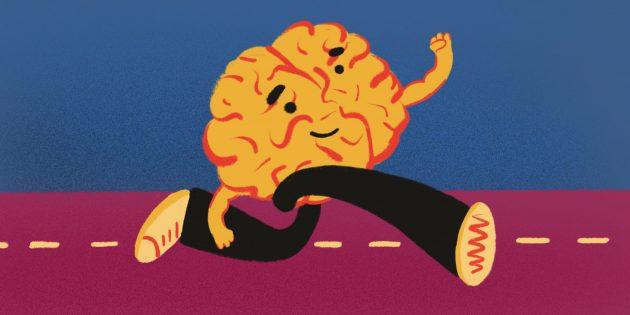 Бег прокачает мозг