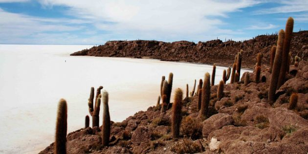 Латинская Америка: Боливия