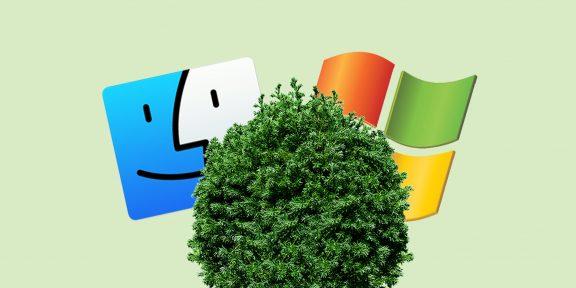 Как спрятать файлы и папки в Windows и macOS