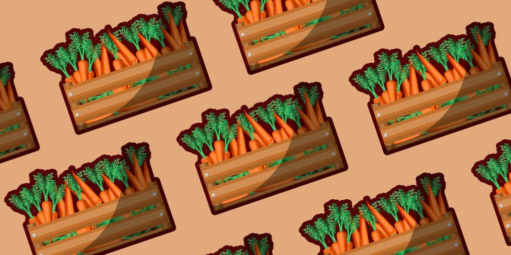 Как сохранить морковь на зиму в пакетах