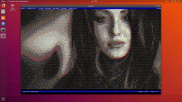 Как в терминале Linux смотреть картинки