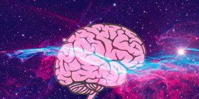 Для чего нужно повышать телесную осознанность и как это сделать