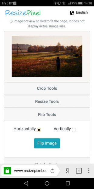 ResizePixel в мобильном браузере