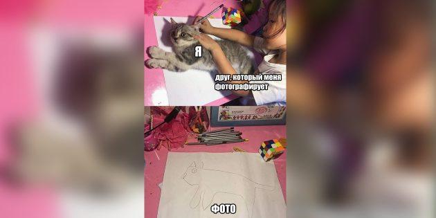 Мемы 2018года: девочка обводит кошку